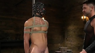 Bound sub flogged together with tugged by horny hunk