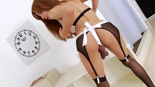 Sexy Ladyboy Aee Pink in Maid Costume Striptease - See Full Video at ShemaleDream.Tube