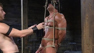 Blindfolded BDSM sub dicksucked by inked jock